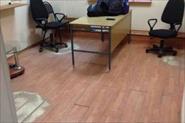 Ремонт офиса:покраска стен,поклеить обои,уложить ламинат,установить плинтуса!